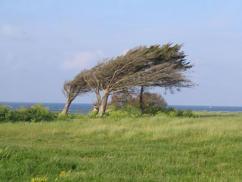 Un vent de changement