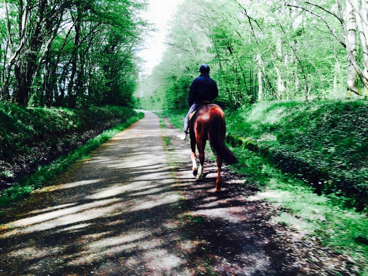 cavalier-cheval-voie-verte-bourgogne