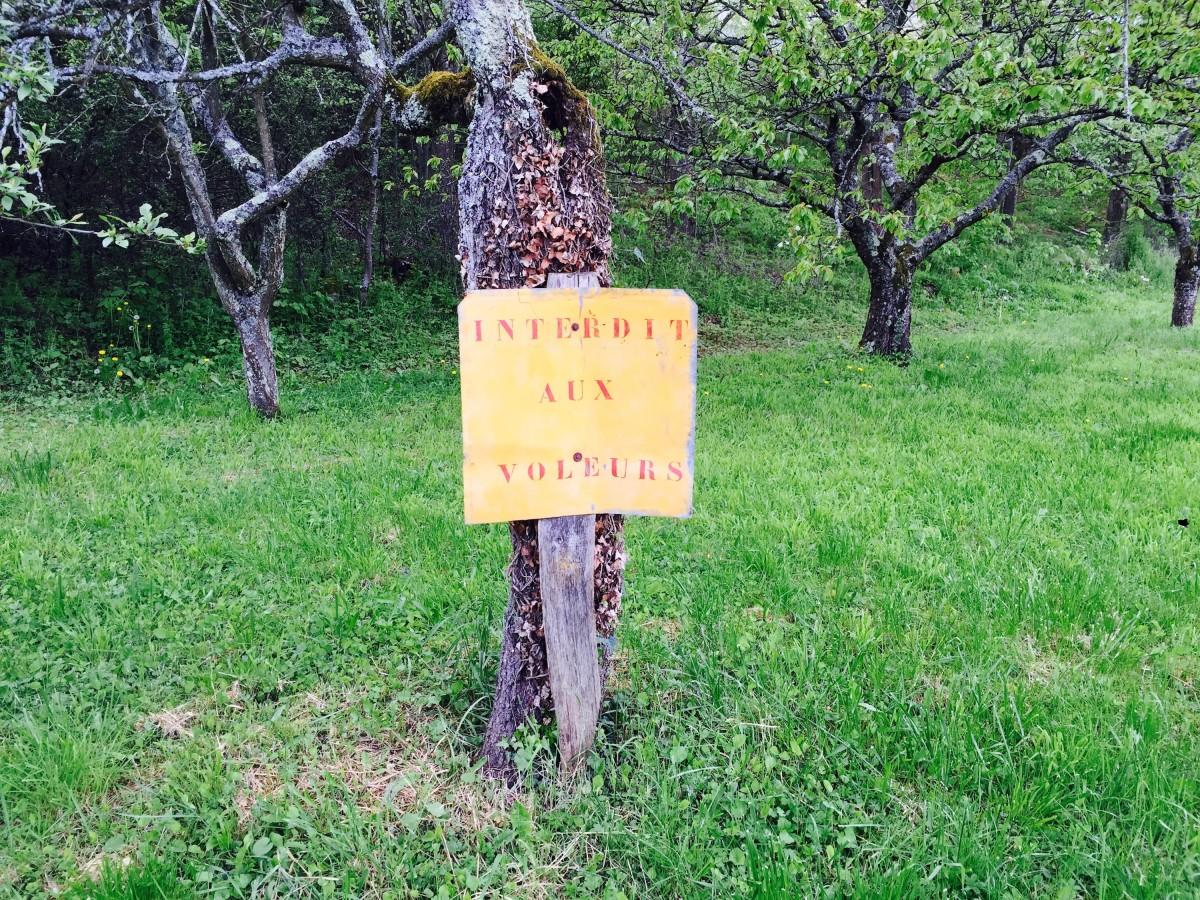 paneau-interdit-aux-voleurs